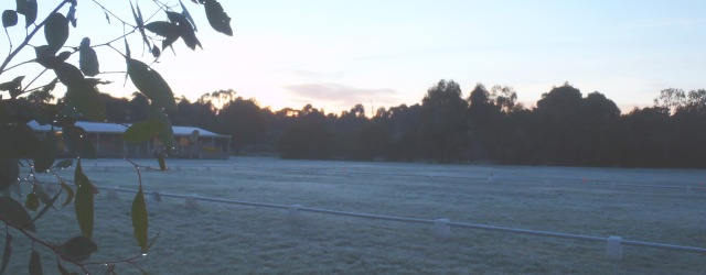grounds-at-dawn_opaic.jpg